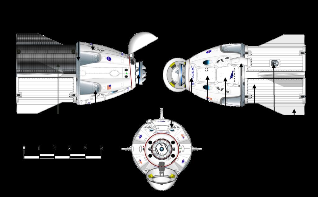 Schéma du Crew Dragon vu de face et des deux côtés
