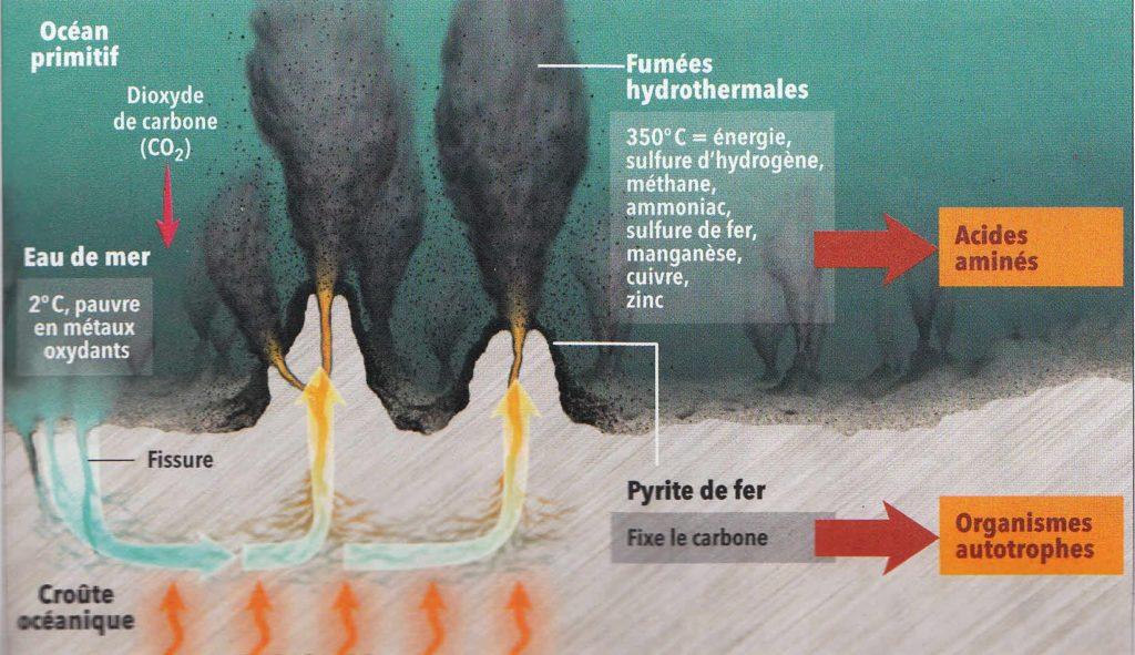 Schéma d'une source hydrothermale