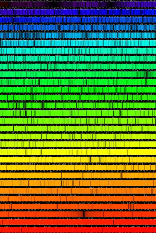 Le spectre solaire est composé d'une série de couleurs successives, auquelles s'ajoutent des raies, qui sont les endroits où la lumière, lors de son trajet dans le soleil, a interagi avec des atomes. La nature de ces atomes varie selon la position où l'on se trouve dans le spectre. A Meudon, on observe dans quatre longueurs d'onde, celles de l'hydrogène et du calcium (nommées Haplha, Hbeta, CallH et CallK)